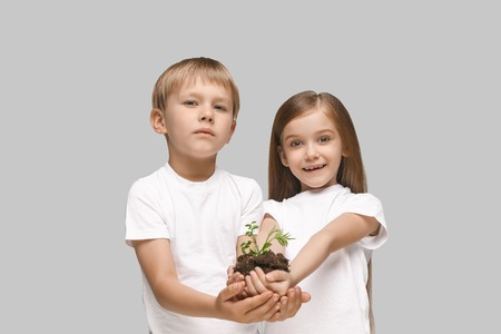Kids hands with seedlings on studio background. Spring, plant, nature, growing and care concept. Caucasian little girl and boy Stock Photo - 107245241