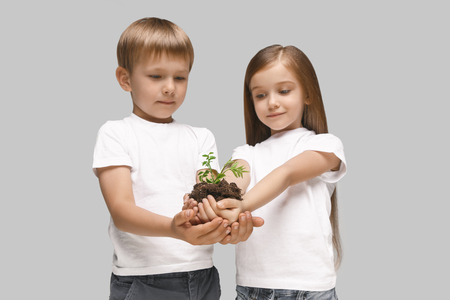 Kids hands with seedlings on studio background. Spring, plant, nature, growing and care concept. Caucasian little girl and boy