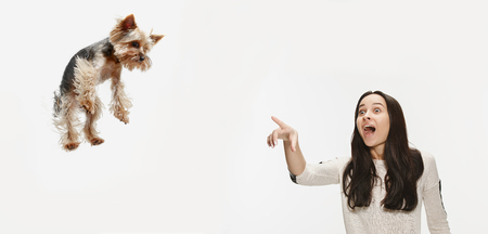 The surprised woman training her dog over white background. Yorkshire terrier at studio against a white.