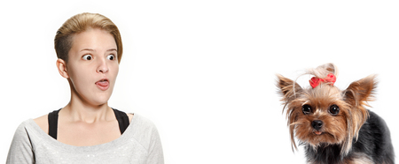 The surprised woman and her dog over white background. Yorkshire terrier at studio against a white. The concept of humans and animals same emotions