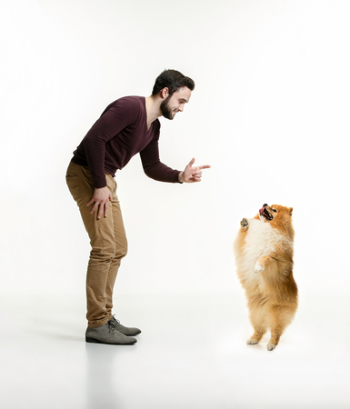 Emotional Portrait of man and his dog, concept of friendship and care of man and animal. The cute Little young pomeranian cob isolated over white studio background