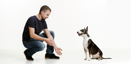 Emotional Portrait of surprised man and his dog, concept of friendship and care of man and animal. Bull Terrier type Dog on white studio background. The concept of humans and animals same emotions Stock Photo