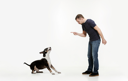Emotional Portrait of man and his dog, concept of friendship and care of man and animal. Bull Terrier type Dog on white studio background