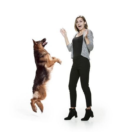 The surprised woman and her dog over white background. Shetland Sheepdog sitting in front of a white studio background. The concept of humans and animals same emotions