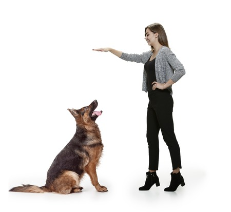 The smiling happy woman and her dog over white background. Shetland Sheepdog sitting in front of a white studio background. The concept of humans and animals same emotions Stock Photo - 111691971