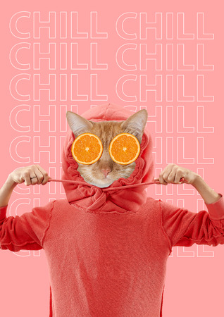 Contemporary art collage. Homeless cat. Minimal fashion style. Relaxation, chill concept