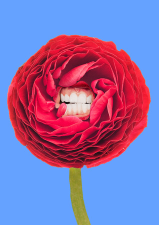 Smile for shining like a spring and being blossom. Alternative red lush rounded flower with ideal smile and white teeth on blue sky-colored background. Modern design. Contemporary pop-art collage.