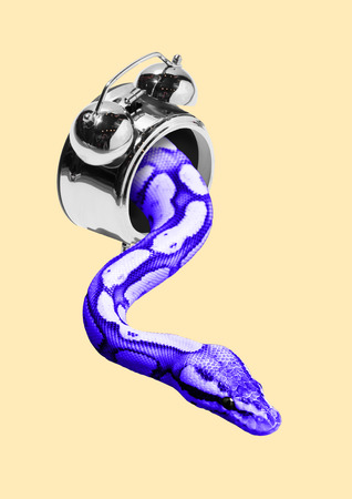 Dangerous or slowly times. Minutes last forever. An alarm or clock with the crawling blue or purple snake against light yellow background. Negative space. Modern design. Contemporary art collage. Foto de archivo - 119758677