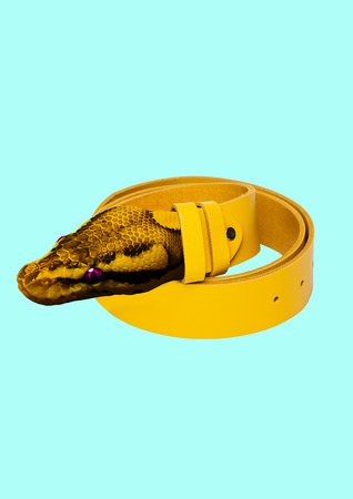 A genuine leather clothes and accessories. Nature materials for human narcissism and ego. A yellow belt with snakes head as a clasp on light blue background. Modern design. Contemporary art collage. Stock Photo