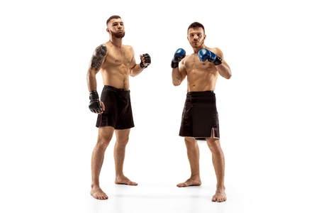 Respect for your opponent. Two professional fighters posing isolated on white studio background. Couple of fit muscular caucasian athletes or boxers fighting. Sport, competition, emotions concept.