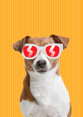 Holidays for pets. Dog in red and white sunglasses against striped yellow background. Modern design. Contemporary art collage. Concept of animal rights protection, summertime, resort or weekend.