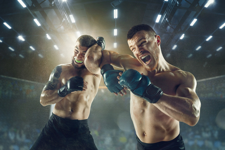 Winner screaming. Two professional fighters posing on the sport boxing ring. Couple of fit muscular caucasian athletes or boxers fighting. Sport, competition and human emotions concept. Standard-Bild