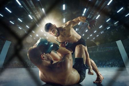 Getting trophy. Two professional fighters posing on the sport boxing ring. Couple of fit muscular caucasian athletes or boxers fighting. Sport, competition and human emotions concept. Stock fotó