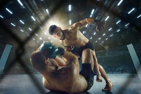 Obtention du trophée. Deux combattants professionnels posant sur le ring de boxe sportive. Couple d'athlètes ou de boxeurs caucasiens musclés en forme qui se battent. Concept de sport, de compétition et d'émotions humaines.