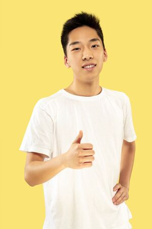 Korean young mans half-length portrait on yellow studio background. Male model in white shirt. Smiling and showing the sign of OK. Concept of human emotions, facial expression.