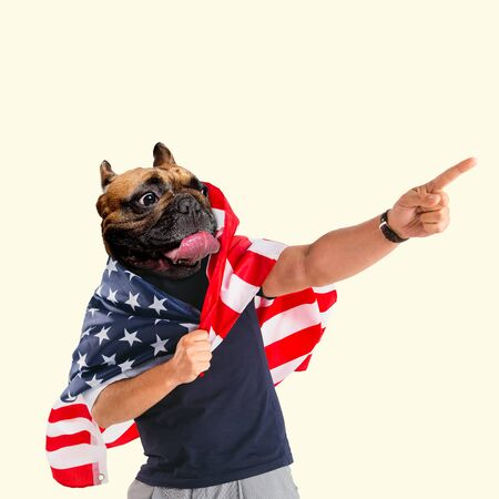 Celebrating an Independence day. Stars and Stripes, flag of United States of America on a man with dogs head. Modern design. Contemporary art. Creative conceptual and colorful collage.