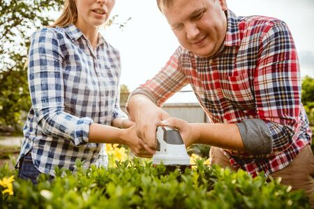 Young and happy farmers couple at their garden in sunny day. Man and woman engaged in the cultivation of eco friendly products. Concept of farming, agriculture, healthy lifestyle, family occupation.