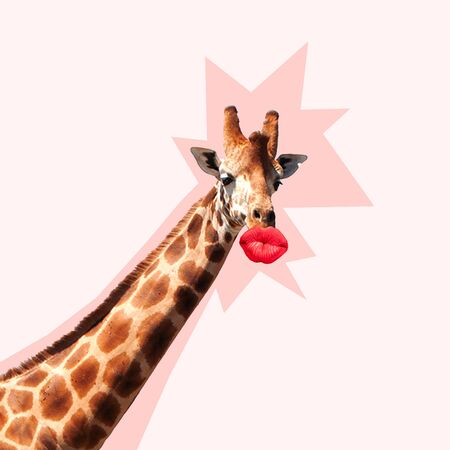 Giraffes head with shadow against it kissing by the big red female mouth. Negative space to insert your text. Modern design. Contemporary art collage. Concept of beauty of nature and animals.