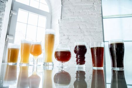 Glasses of dark and light beer and ale in sunlight on brick wall background. Cold delicious alcohol drinks are prepared for a big friend's party. Concept of holiday, fun, meeting, oktoberfest.