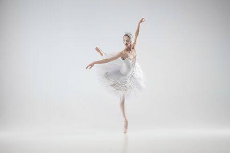Winter lebendig. Junge anmutige klassische Ballerina, die auf weißem Studiohintergrund tanzt. Frau in zarten Kleidern wie ein weißer Schwan. Das Konzept Anmut, Künstler, Bewegung, Aktion und Bewegung. Sieht schwerelos aus.