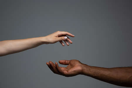 Touch of God. Racial tolerance. Respect social unity. African and caucasian hands gesturing on gray studio background. Human rights, friendship, intenational unity concept. Interracial unity. Imagens