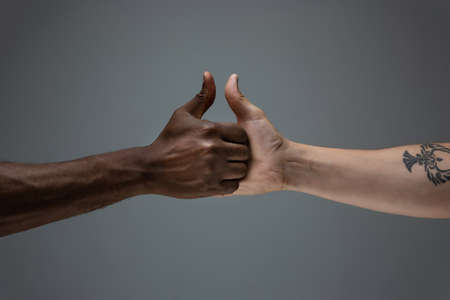 Friends time. Racial tolerance. Respect social unity. African and caucasian hands gesturing on gray studio background. Human rights, friendship, intenational unity concept. Interracial unity.