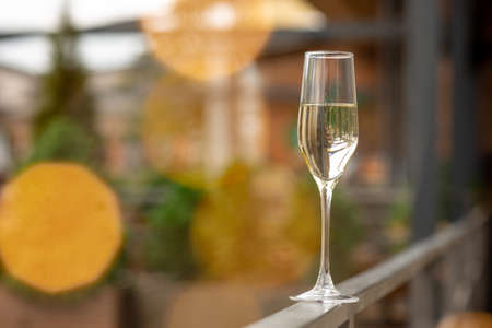 Glass of sparkling champagne with bokeh. Warm. Celebration event, holidays, drinks concept. Companion for best family or friends memories. Anniversary, wedding day or Christmas time.