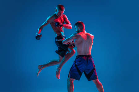 In flight. MMA. Two professional fighters punching or boxing isolated on blue studio background in neon. Fit muscular caucasian athletes or boxers fighting. Sport, competition and human emotions, ad.