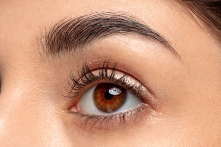 Eye, brow. Close up portrait of beautiful jewish female model. Parts of face and body. Beauty, fashion, skincare, cosmetics, wellness concept. Copyspace. Well-kept skin, fresh look, details.