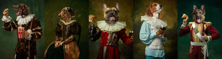 Models like medieval royalty persons in vintage clothing headed by dogs heads on dark vintage background. Imagens
