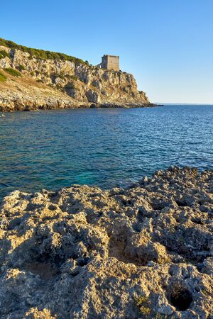 Torre dellAlto in the Regional Park of Porto Selvaggio in Apulia At Sunset - Italy Фото со стока