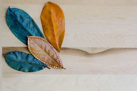 Painted leaves on a wood background with white space.