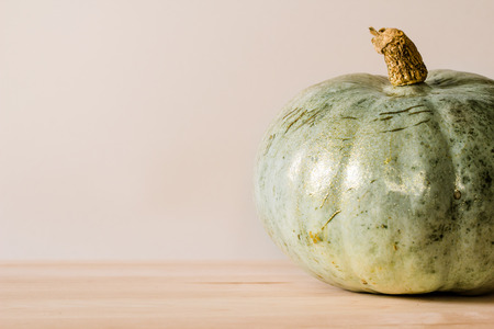 Single greenish-blue pumpkin sprinkled with glitter