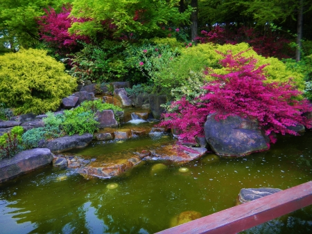 Serene landscape photo of Japanese botanical garden with still pond and colorful green and fuschia pink bushes, Nagoya, Japan photo