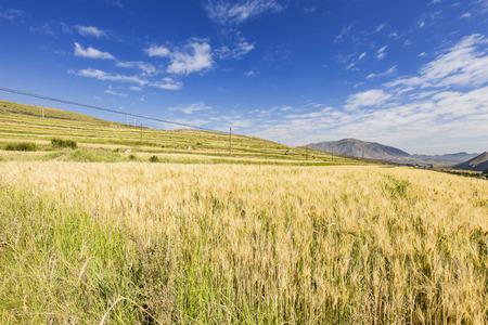 thatcher: Highlands scenery