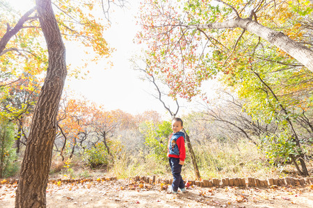 children at autumn park Stock Photo