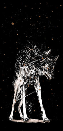 graphics, sketch with the image of a wolf with stars