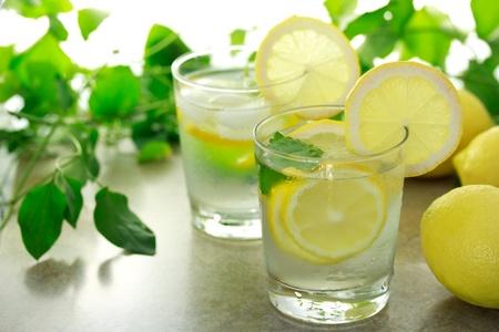 Lemon water met verse citroenen en groene planten Stockfoto - 10010433