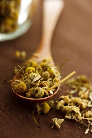flores secas: Las flores secas de manzanilla en una cuchara de madera