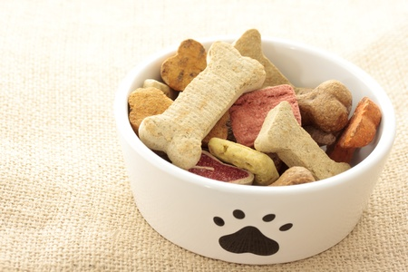 Dog food in bowl photo