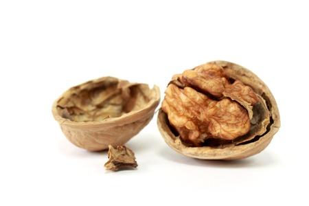 nutshell: Walnut in Nutshell