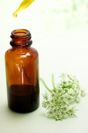 elixir: La medicina herbaria con la botella de Anís del cuentagotas y de las flores