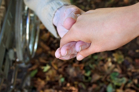 80 plus years: Young and senior holding  hands over autumn  leaves