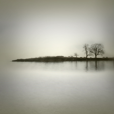 grey water: Landscape in sepia tones with isolated trees