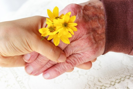 Senior Lady and Young Woman Holding Hands - Giving Flowers  Friendship, Care, Service