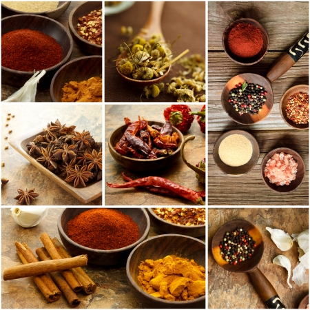 curry spices: Collage of many Spices