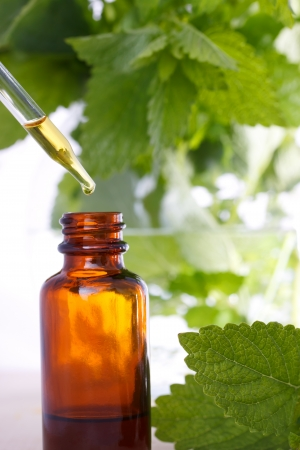 essential oil: Herbal medicine with dropper bottle and mints