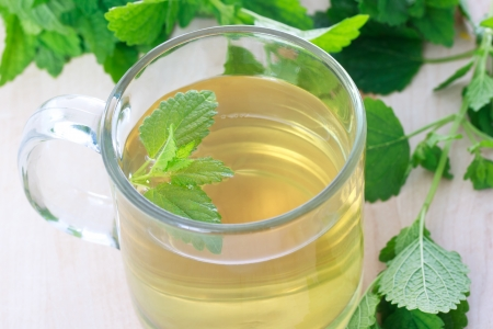 Mint tea with fresh mint leaves  photo