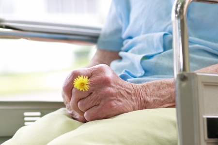 respecting: Senior Woman Sitting in a Wheelchair Holding a Flower
