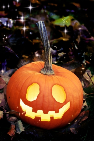 Jack O Lanterns on Autumn Leaves Stock Photo - 15101721